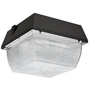 Canopy Light 100Watt LED