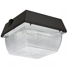 Canopy Light 80Watt LED